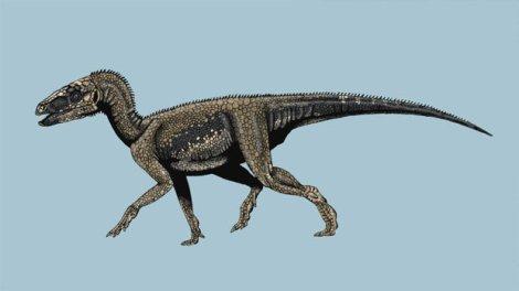 sacissauro-dinossauro-dinos-do-brasil-20111007-size-620