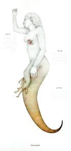 teniagua-vista-lateral