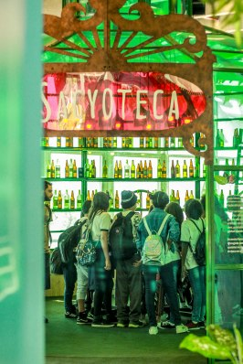 Na narrativa que permeia a exposição, 350 garrafas de sacis foram econtradas em caixas enterradas em um bambuzal. No dia seguinte, as garrafas foram abertas e os sacis ocuparam o Sesc! Na sacyoteca, você encontra os vestígios desta descoberta.