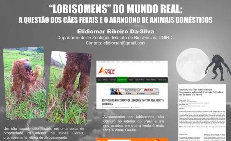 lobi.png